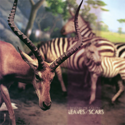 Beware of Safety - Leaves/Scars 2xLP BABY BLUE VINYL /100