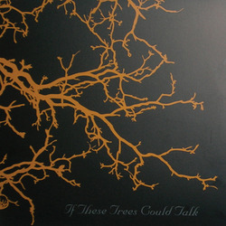 If These Trees Could Talk 12""