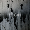 "Pelican premiers ""Deny The Absolute"" via Pitchfork!"